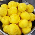 飯田市マロン ゆず収穫